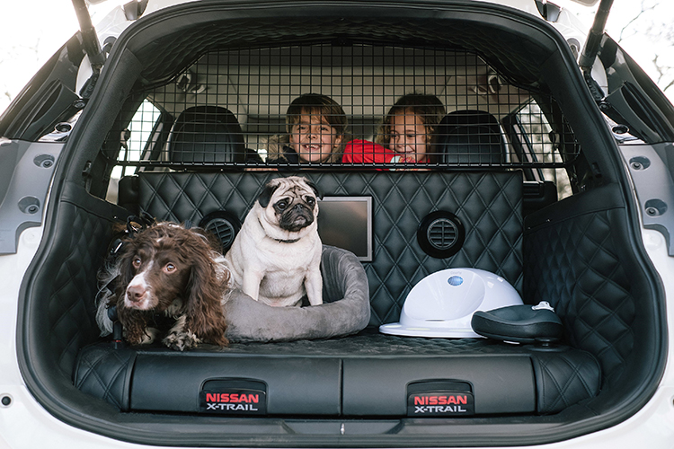 Nissan X Trail 4dogs The Pawfect Car For Family Adventures